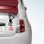 Opice v autě