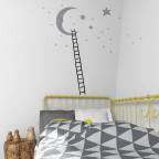Měsíc mezi hvězdami